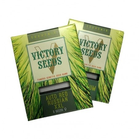 Victory Seeds Green wild shark Auto (5uds)