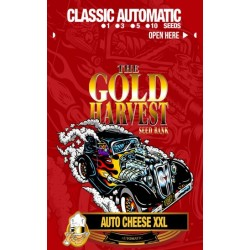 Gold Harvest Auto Cheese...